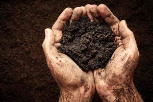 a man holding topsoil while determining how much a yard of topsoil weighs