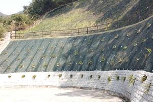 retaining wall public
