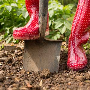 Woman digging in her garden using topsoil