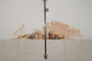 mold in a bathroom shower which obviously indicates the need for a bathroom remodel from an expert contractor