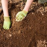 The Top 4 Uses For Topsoil in Maryland