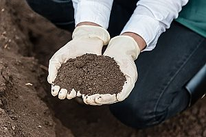 loam soil that is being used above fill dirt and was delivered to a home through a Virginia topsoil contractor