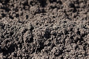 a large pile of topsoil that is held together by fill dirt to create a stable foundation for plants to grow