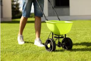 A person planting grass seeds into lawn using a spreader