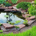 a backyard pond with lily pads and edging stones