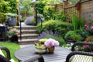 gorgeous backyard terrace with patio, stone steps and plants