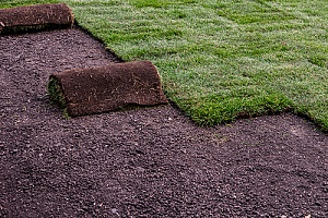 How to Create a Putting Green in Your Backyard in 10 Easy ...