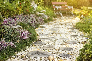 stone path in yard with pebbles