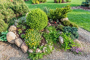 a backyard project done by a homeowner who learned how to make a rock garden