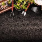 topsoil with plants and gardening supplies