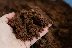 person holding a handful of bio mix soils