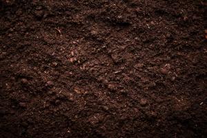 Soil 5