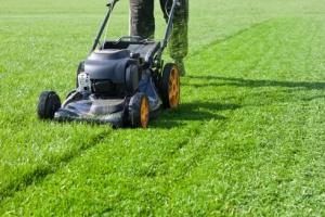 Preparing Lawn