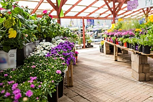 a garden center that sells topsoil