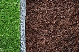 grass growing next to fill dirt
