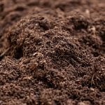 topsoil that is being used in a backyard