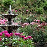 Outdoor fountain in beautiful garden