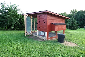 Red wood and metal chicken coop
