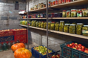 Root cellar filled with fruits vegetables