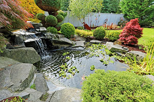View of small pond, trimmed bushes and small waterfall