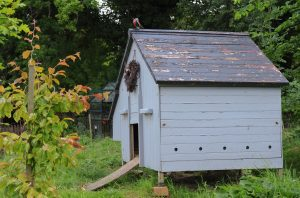 build a shed foundation to protect your shed