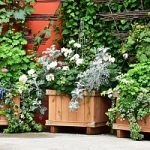 Planter boxes made of wood