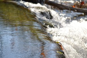 Stormwater runoff can become a huge concern