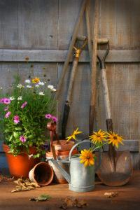 dirtconnections.com gardening tools