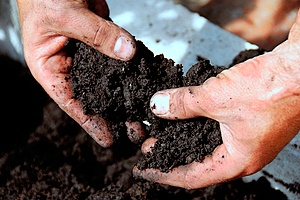great soil for gardening