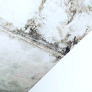 mold growing on wall unprotected by waterproofing