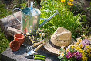 gardening tips by Dirt Connections