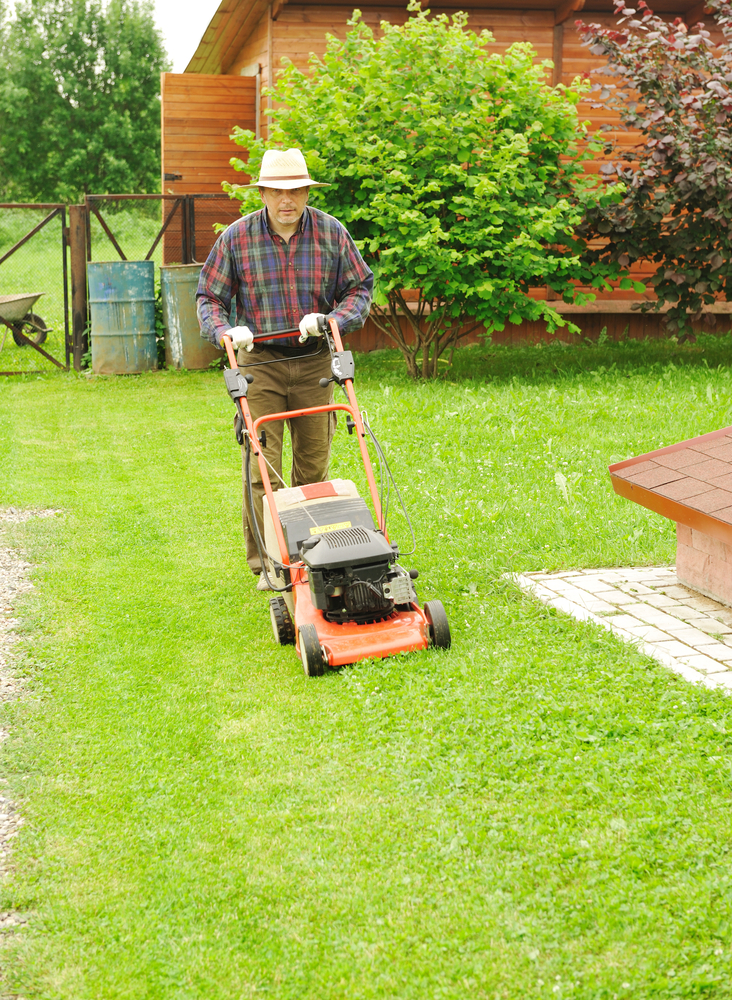 mowing the grass is great for your garden and your health