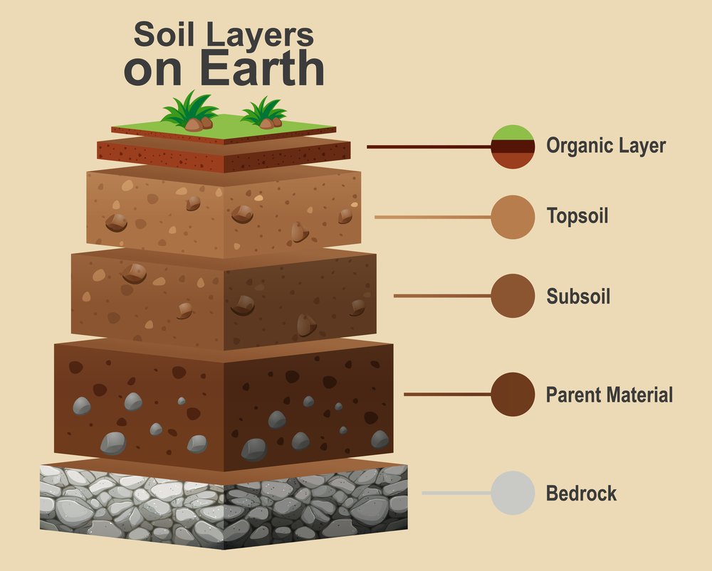 dirt layers information provided by dirt connections