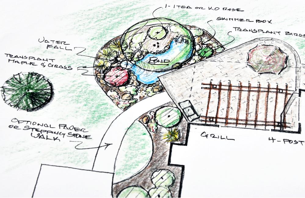 landscape plan by dirt connections