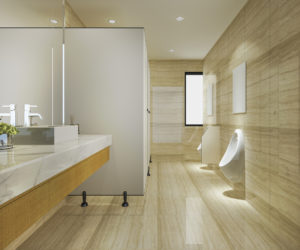 commercial bathroom project
