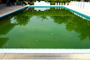 Abandoned Swimming Pool with Dirty Water