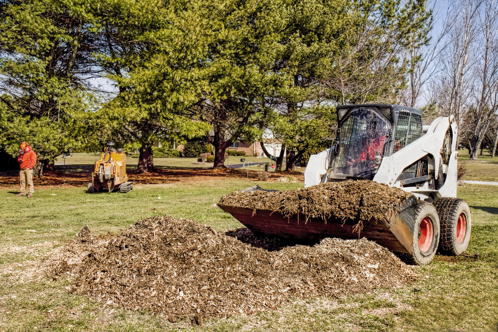 yard clean up and grading work