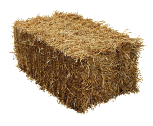 use straw with your grass seed