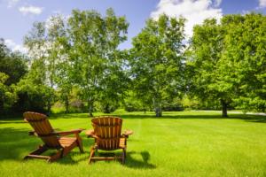 your newly landscaped backyard, beautiful