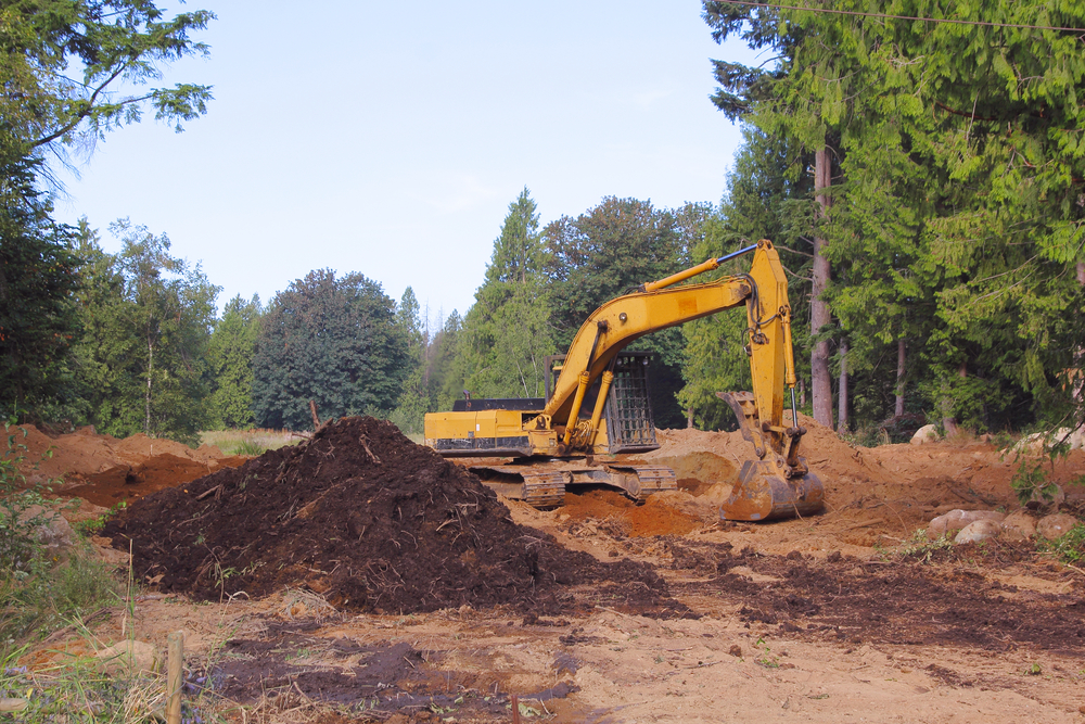 clean up the property owner's land