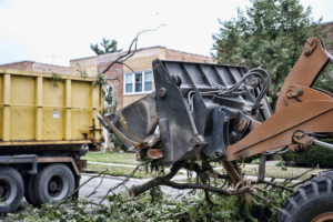yard debris, clean up and haul off