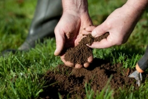 gardner testing soil