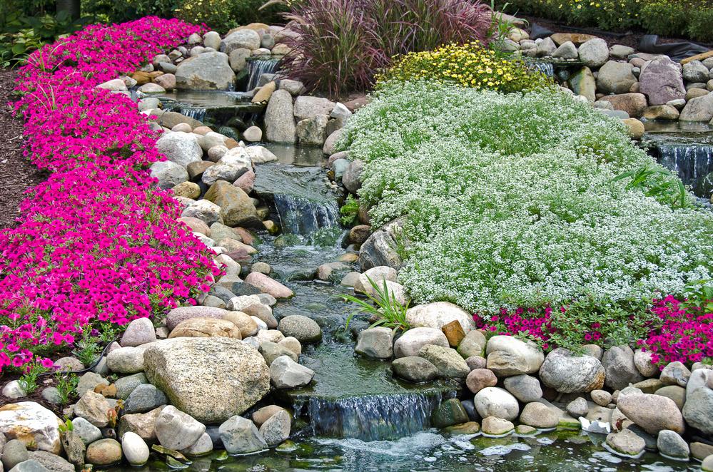 beautiful waterfall gardening