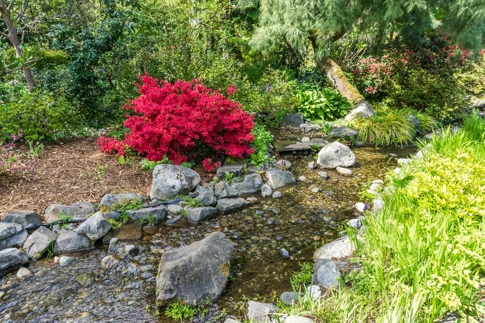 gardening with beautiful waterfalls
