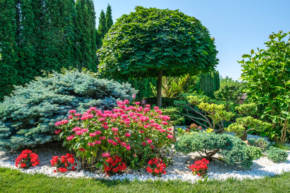your hard work makes for a beautiful fall garden of flowers