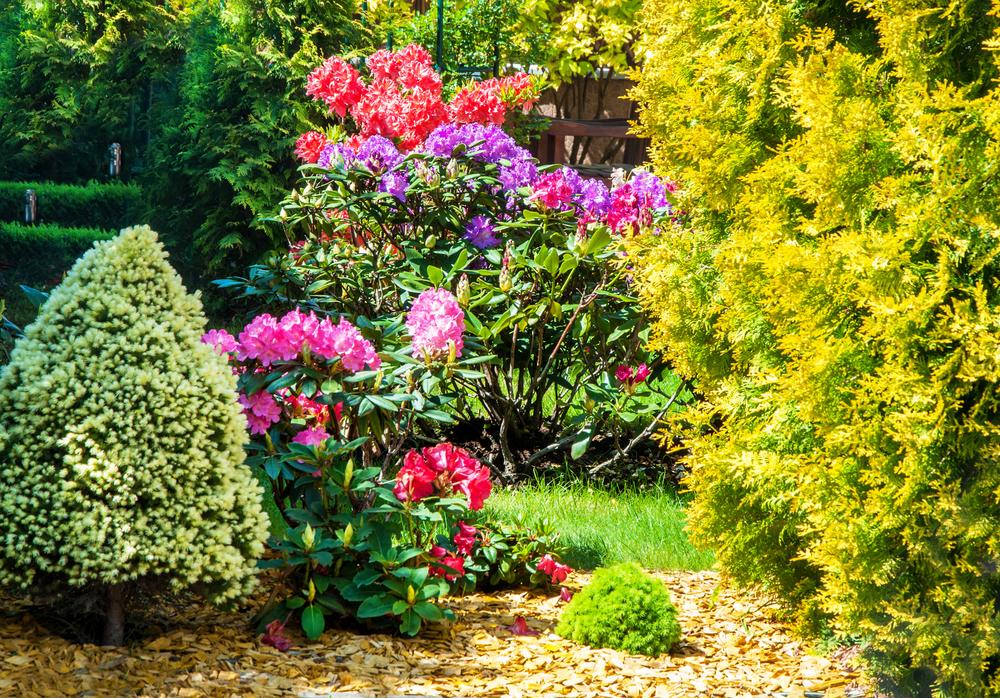 make your garden grow fall gardening flowers