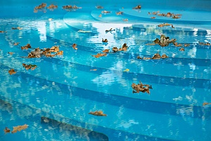 leaves in a pool that will be removed in the fall